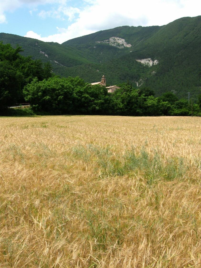 paesaggio_zona_sant_anna.jpg