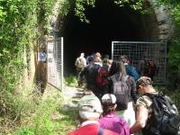 un-delle-4-gallerie