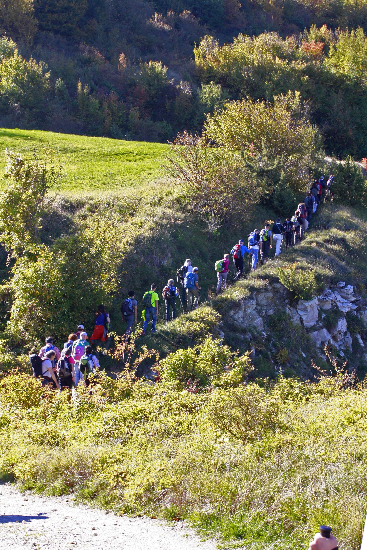 Escursione carpegna 010