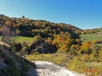 Monte Carpegna - 15 Ottobre 2017