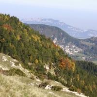 Escursione carpegna 034