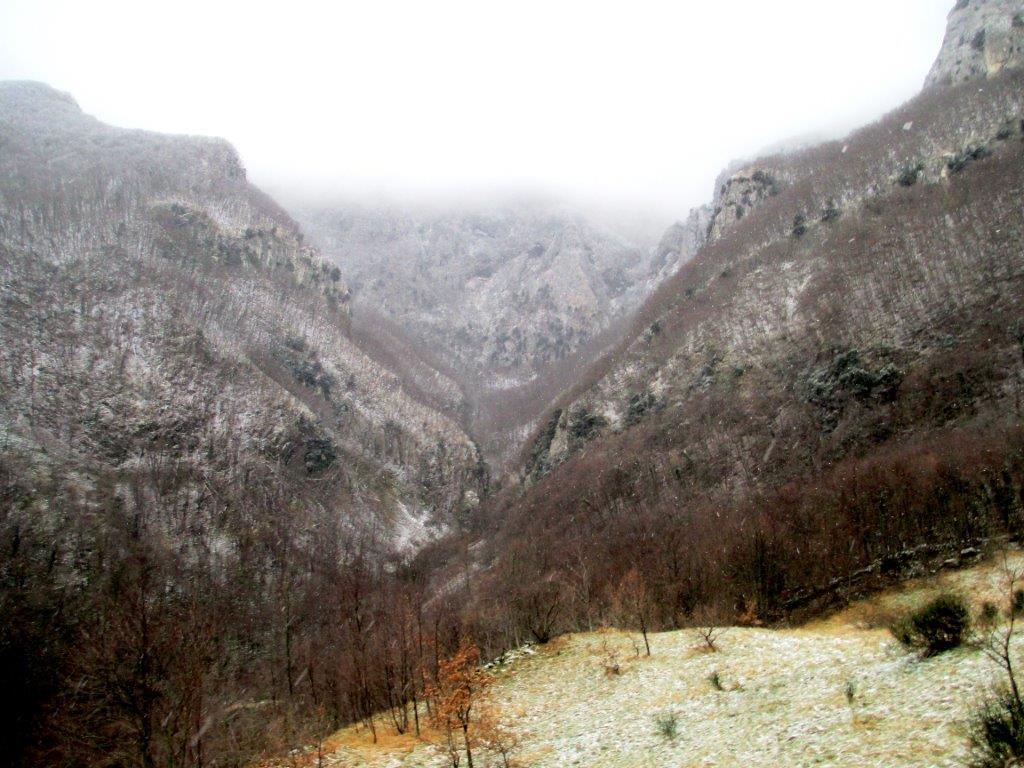 monte catria 057 (2)
