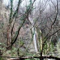 monte catria 021 (3)