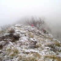 monte catria 041 (2)