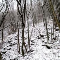 monte catria 051 (2)