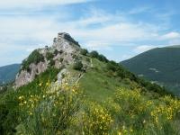 monte-nerone-027