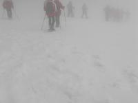 sfumati-nella-nebbia
