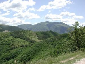 Una proposta intelligente per lo sviluppo delle zone montane del pesarese