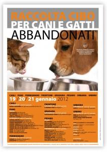 Raccolta cibo per cani e gatti abbandonati