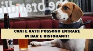 CANI_RISTORANTE