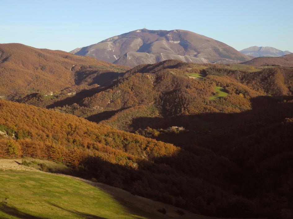 verso il Monte Nerone e il Catria