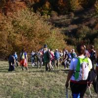 Escursione carpegna 075
