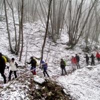 monte catria 049 (2)