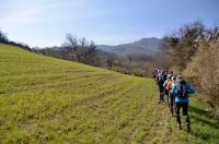 Monte Catria - 30 Marzo 2014