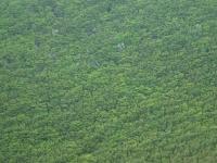 Monte Cucco 22 maggio 2012
