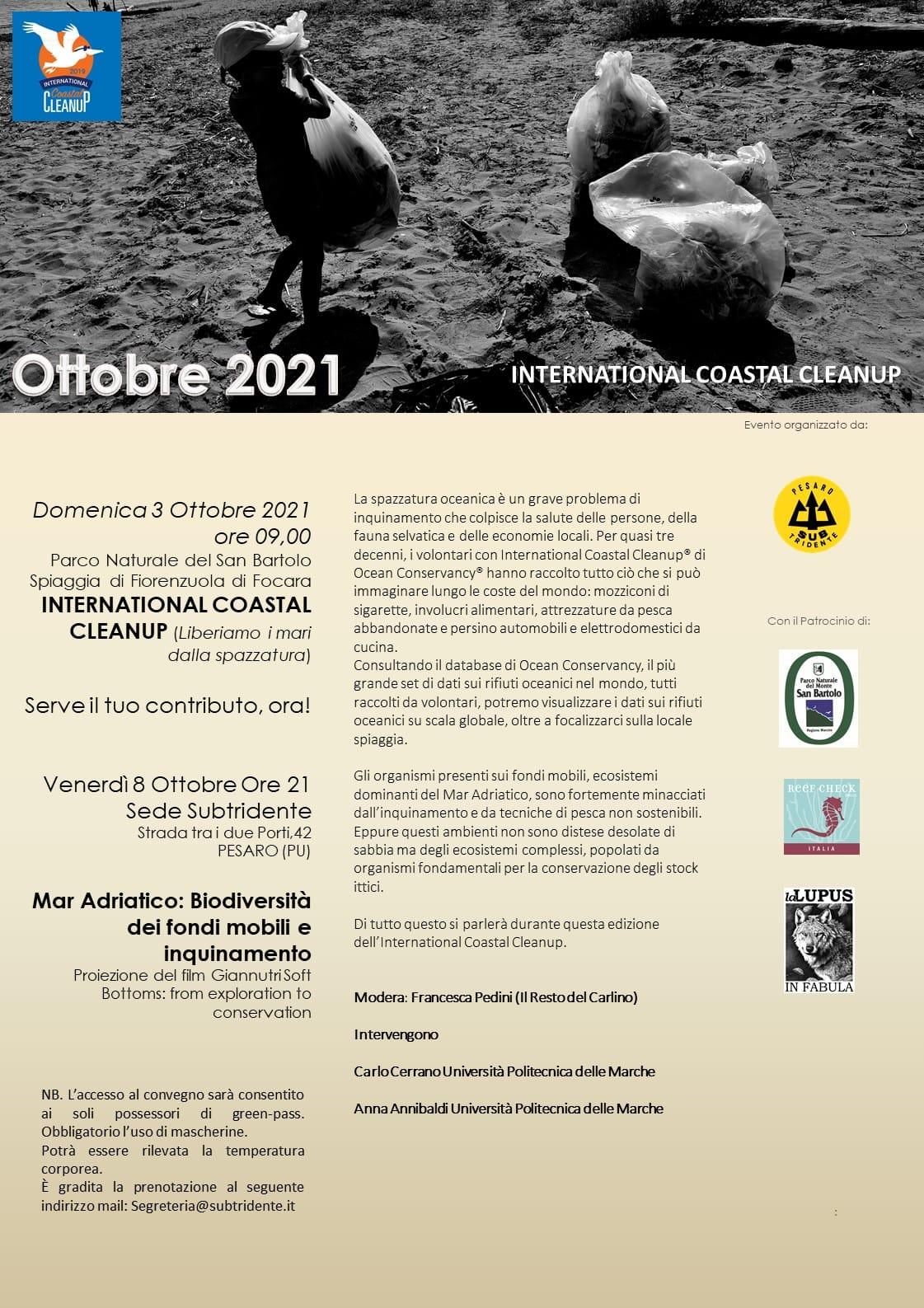 Mare Adriatico: biodiversità dei fondi mobili e inquinamento